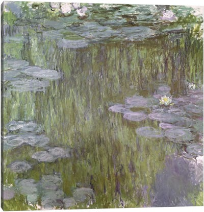 Nympheas at Giverny, 1918  Canvas Print #BMN2110