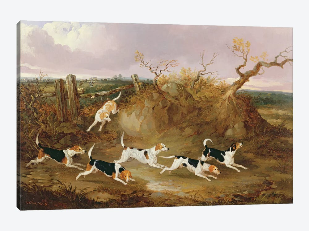 Beagles in Full Cry, 1845  by John Dalby 1-piece Canvas Wall Art