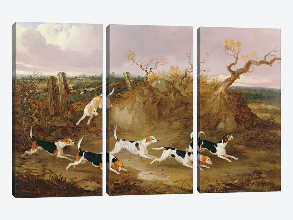 Beagles in Full Cry, 1845  by John Dalby 3-piece Canvas Artwork
