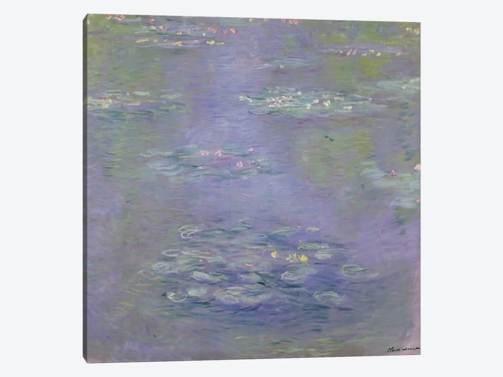 Waterlilies, 1903  by Claude Monet 1-piece Canvas Art