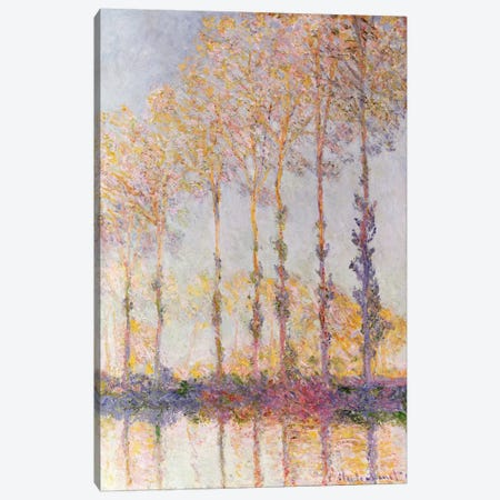 Poplars on the Banks of the Epte, 1891  Canvas Print #BMN2123} by Claude Monet Canvas Art Print