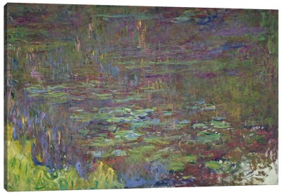 Waterlilies at Sunset, detail from the right hand side, 1915-26 Canvas Art Print