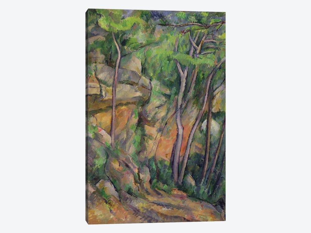 In the Park of Chateau Noir, c.1896-99  by Paul Cezanne 1-piece Canvas Art