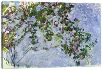 The Roses, 1925-26  Canvas Print #BMN2145
