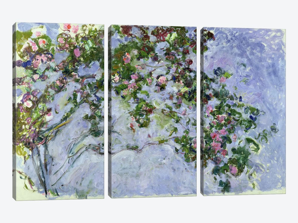 The Roses, 1925-26 by Claude Monet 3-piece Art Print