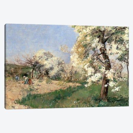 Pear Blossoms, Villiers-de-Bel  Canvas Print #BMN2160} by Childe Hassam Canvas Art Print