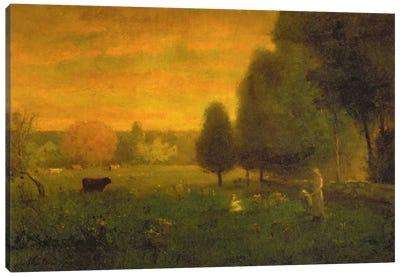 Sundown Brilliance  Canvas Art Print
