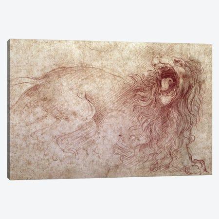 Sketch of a roaring lion  Canvas Print #BMN2181} by Leonardo da Vinci Art Print