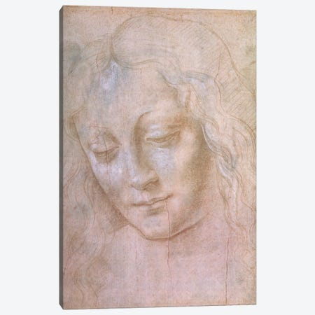 Head of a woman  Canvas Print #BMN2182} by Leonardo da Vinci Canvas Print