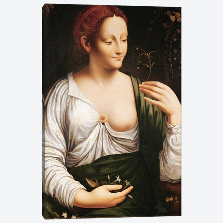 Columbine  Canvas Print #BMN2185} by Leonardo da Vinci Canvas Art