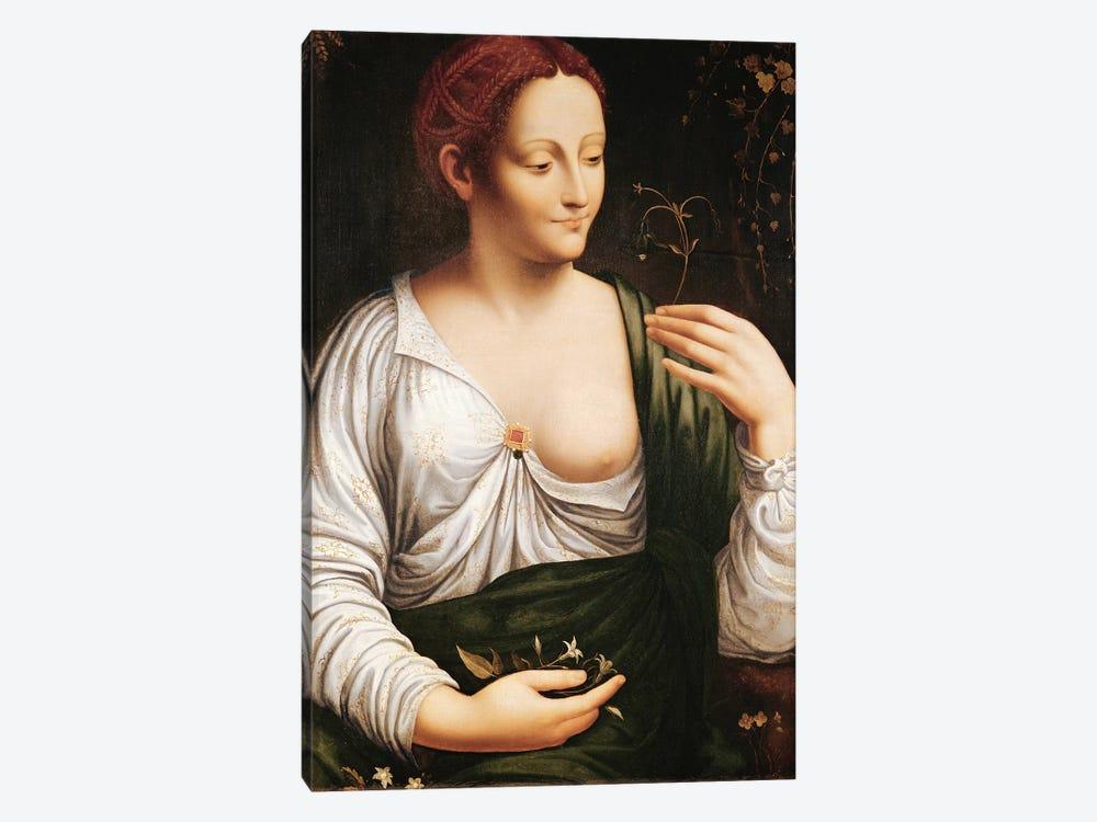 Columbine  by Leonardo da Vinci 1-piece Canvas Art Print