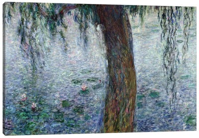 Waterlilies: Morning with Weeping Willows, detail of the right section, 1915-26   Canvas Art Print