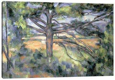 The Large Pine, 1895-97  Canvas Art Print