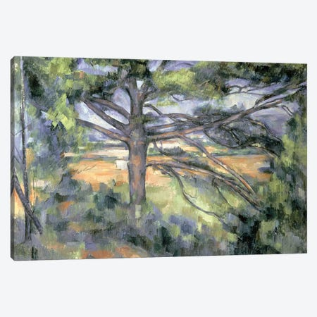 The Large Pine, 1895-97  Canvas Print #BMN2193} by Paul Cezanne Canvas Artwork