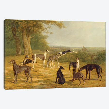 Nine Greyhounds in a Landscape  Canvas Print #BMN2195} by Jacques-Laurent Agasse Canvas Art Print