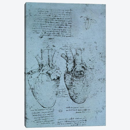 The Heart, facsimile of the Windsor book  Canvas Print #BMN2205} by Leonardo da Vinci Canvas Art Print