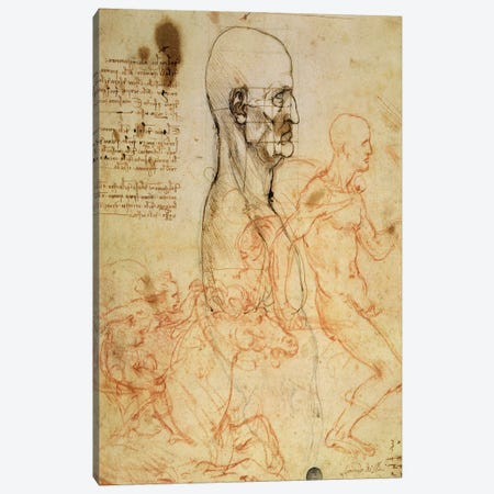 Torso of a Man in Profile, the Head Squared for Proportion, and Sketches of Two Horsemen, c.1490 and c.1504  Canvas Print #BMN2215} by Leonardo da Vinci Canvas Artwork