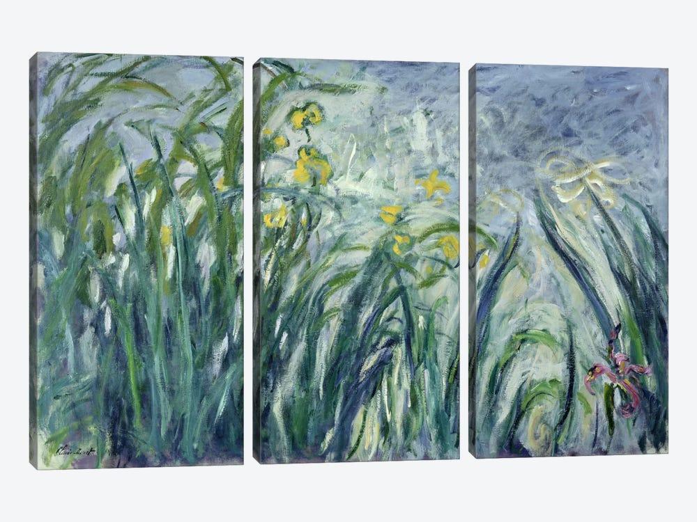 Yellow and Purple Irises, 1924-25  by Claude Monet 3-piece Art Print