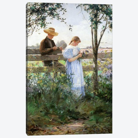A Country Romance  Canvas Print #BMN2294} by David B. Walkley Canvas Wall Art