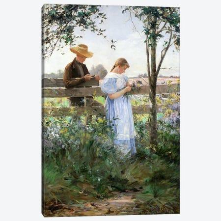 A Country Romance  Canvas Print #BMN2294} by David B. Walkley Canvas Wall Art