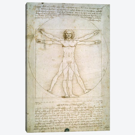 The Proportions of the human figure  Canvas Print #BMN230} by Leonardo da Vinci Canvas Art Print