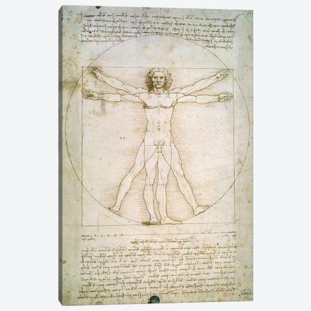 The Proportions of the human figure  Canvas Print #BMN230} by Leonardo da Vinci Canvas Art Print