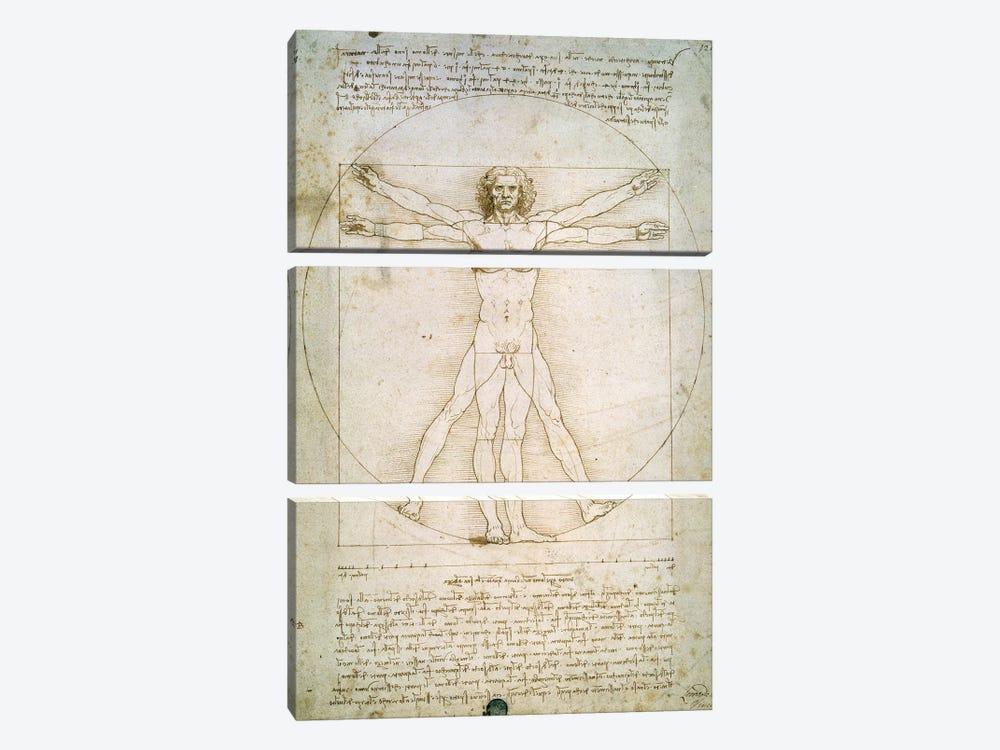 The Proportions of the human figure  by Leonardo da Vinci 3-piece Canvas Art Print