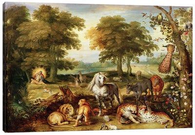 Terrestrial Paradise  Canvas Art Print