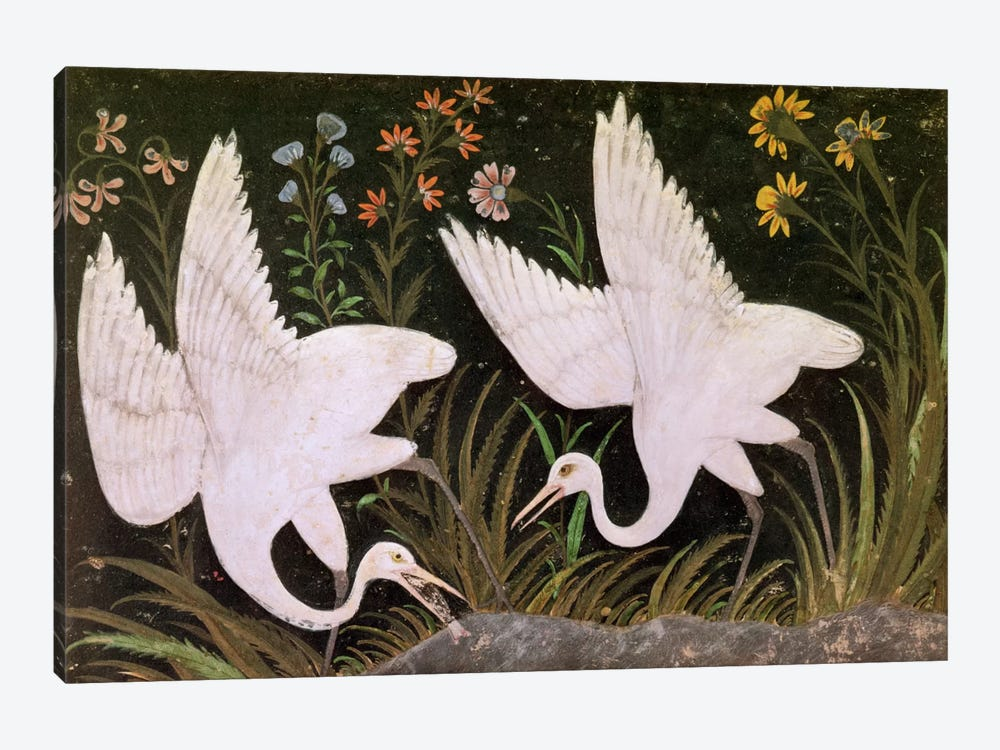 Two Cranes on the Edge of a Pond  by Indian School 1-piece Canvas Art