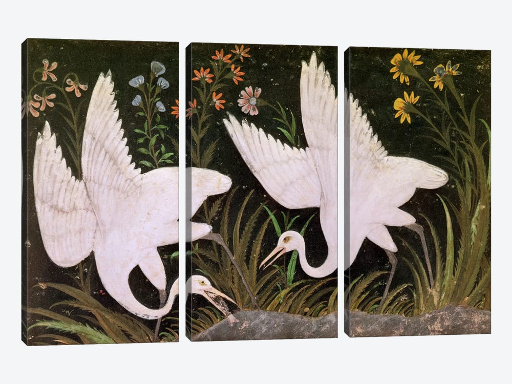 Two Cranes on the Edge of a Pond  by Indian School 3-piece Canvas Artwork