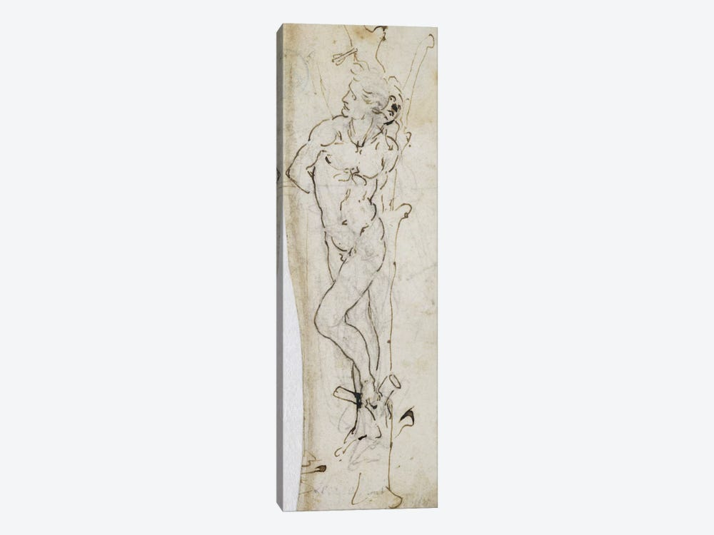 Study of St. Sebastian, 1480-81 1-piece Art Print