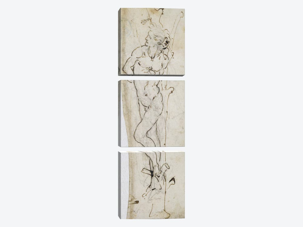 Study of St. Sebastian, 1480-81  by Leonardo da Vinci 3-piece Canvas Print