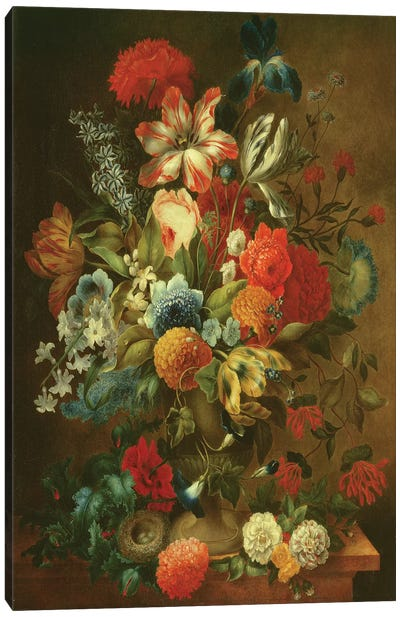 Flower Still Life with Bird Nest  Canvas Art Print