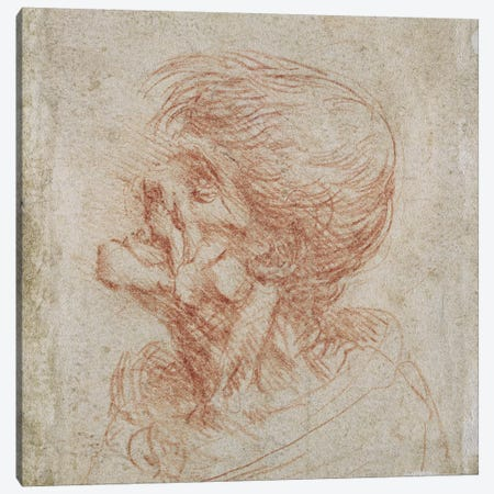 Caricature Head Study of an Old Man, c.1500-05  Canvas Print #BMN2379} by Leonardo da Vinci Canvas Artwork