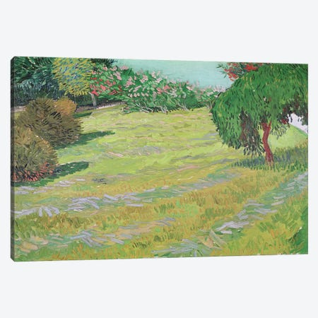 Field in Sunlight, 1888  Canvas Print #BMN2387} by Vincent van Gogh Canvas Art