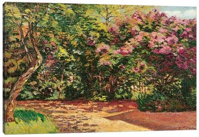 Lilac, the Artist's Garden  Canvas Art Print