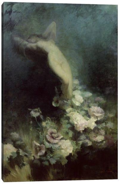 Les Fleurs du Sommeil  Canvas Art Print