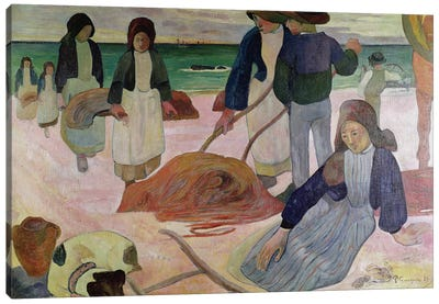 Seaweed Gatherers, 1889  Canvas Art Print