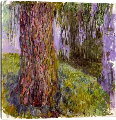 Weeping Willow and the Waterlily Pond, 1916-19  Canvas Art Print