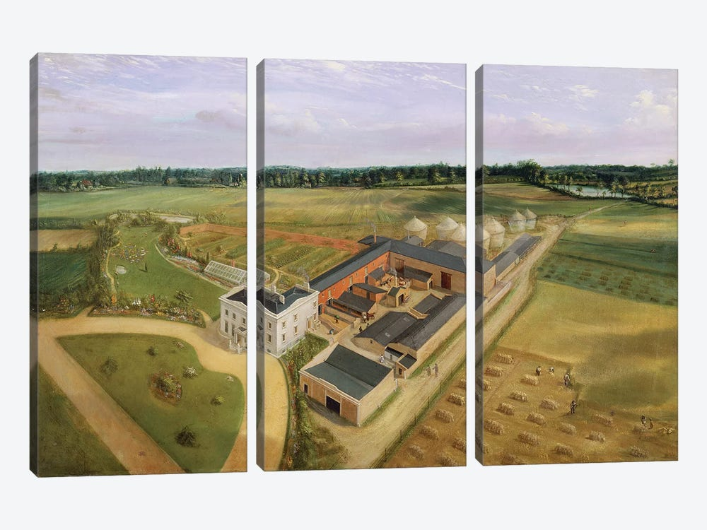 Tiptree Hall and Farm, Essex, c.1850-60  by William Brown 3-piece Canvas Wall Art