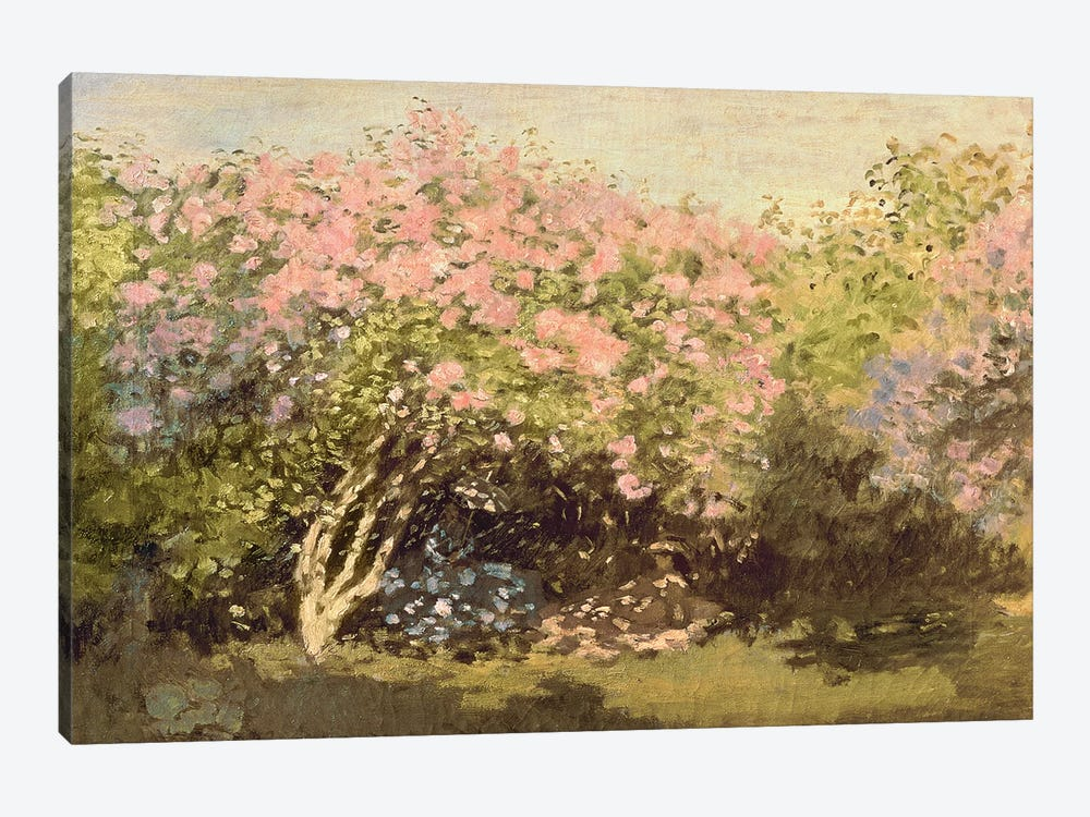 Lilac in the Sun, 1873  by Claude Monet 1-piece Canvas Art