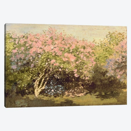 Lilac in the Sun, 1873  Canvas Print #BMN2446} by Claude Monet Canvas Print