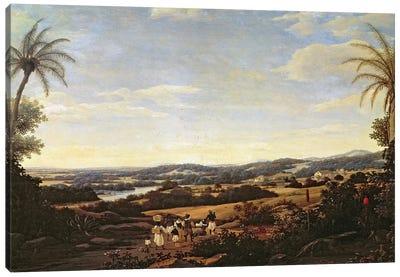 Brazilian Landscape with a Plantation  Canvas Art Print