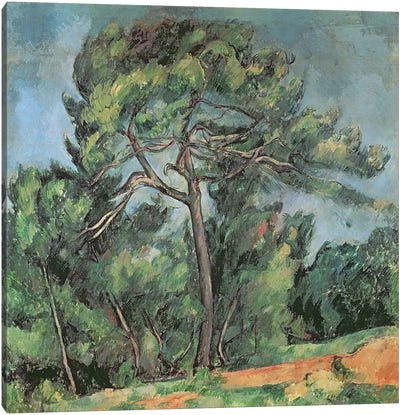The Large Pine, c.1889  Canvas Print #BMN2497