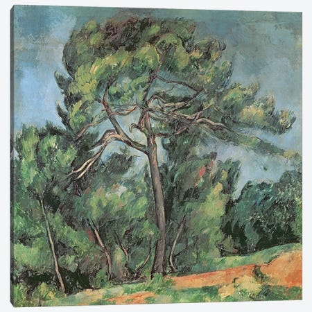 The Large Pine, c.1889  Canvas Print #BMN2497} by Paul Cezanne Canvas Wall Art