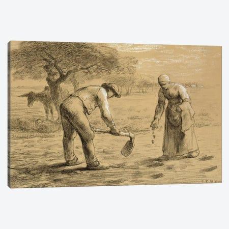 Peasants planting potatoes  Canvas Print #BMN2511} by Jean-Francois Millet Canvas Wall Art