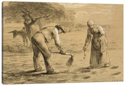 Peasants planting potatoes  Canvas Art Print