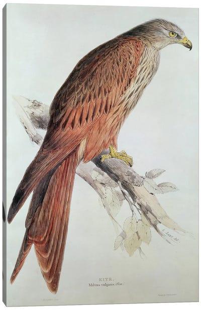 Kite Canvas Art Print