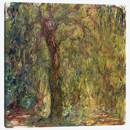 Weeping Willow, 1918-19  Canvas Print #BMN2525} by Claude Monet Canvas Wall Art