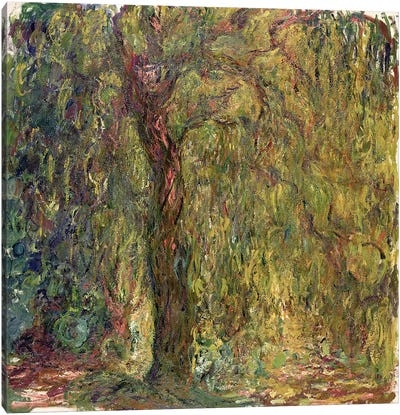 Weeping Willow, 1918-19  Canvas Print #BMN2525